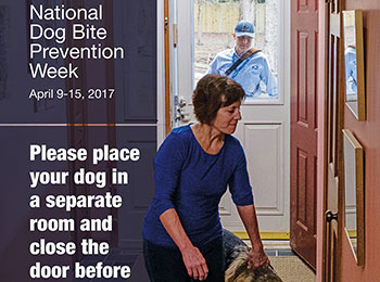 National Dog Bite Prevention Week