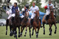 The Sentebale Royal Salute Polo Cup